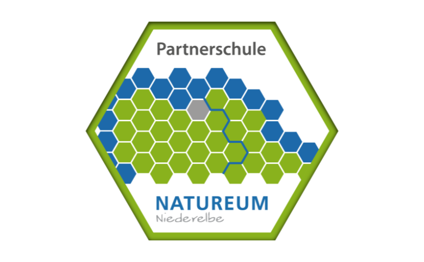 Naturum Partnerschule Featured Image